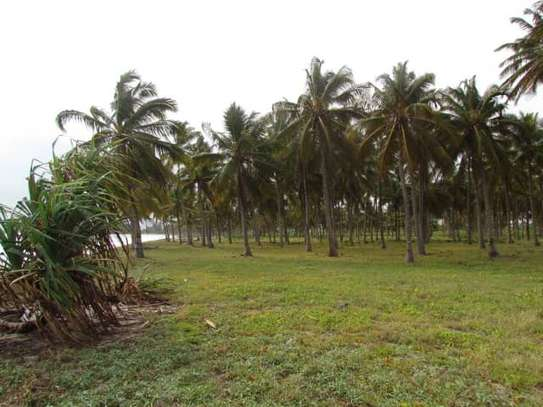 beach plot for sale at kigamboni 11 acres image 2