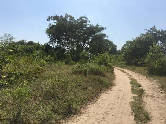 FARMLAND FOR SALE AT BUMA IN BAGAMOYO TOWN image 8
