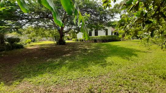 3 Bedrooms  House For Rent in Oysterbay image 4