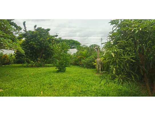 5 bed room house for rent at masaki$4000pm image 6