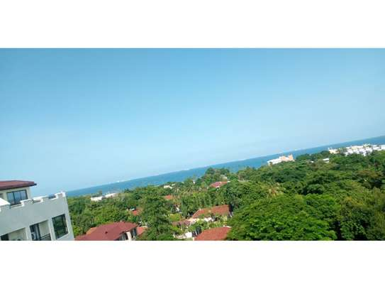 3bed apartment at oyster bay $1500pm image 11