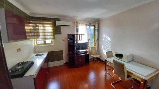 1bhk apartment fully furnished for rent at masaki image 5
