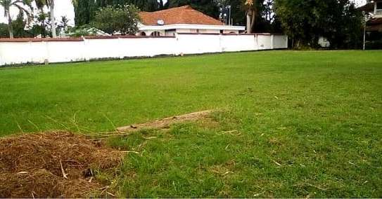 House for sale t sh mLN 950 image 13
