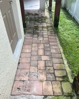 Paving cleaning image 1