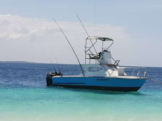31ft Sport Fishing and Leisure Boat