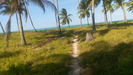 8.5 acres Beach plot in Kilwa masoko,Bagwe area. image 3