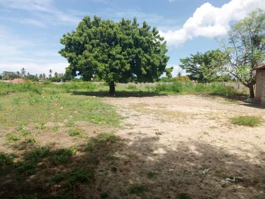 plot for sale at ununio with 4 acres image 3