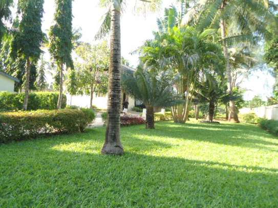 4bed house for sale at mbezi beach 2800sqm area with swiming pool image 10