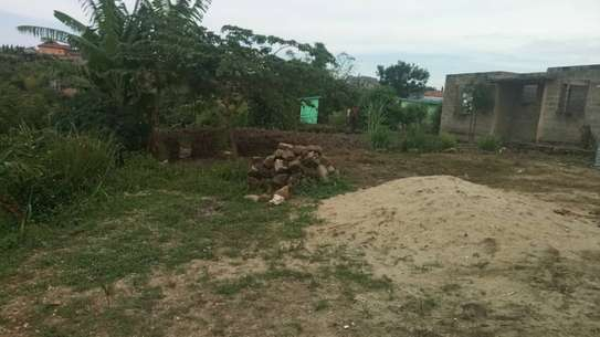 plot for sale  8 milionat bunju b near simba club area qsm 600 image 2