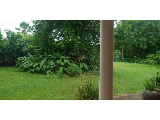 5bed with sea view at masaki near toure drive $2500pm image 7