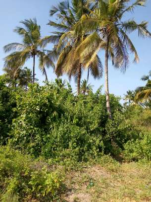 Plot For Sale Kilomo Bagamoyo image 1