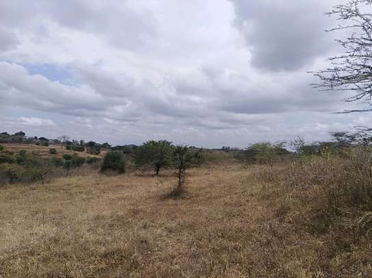 11 ACRES SHAMBA FOR SALE IN KISONGO ARUSHA.