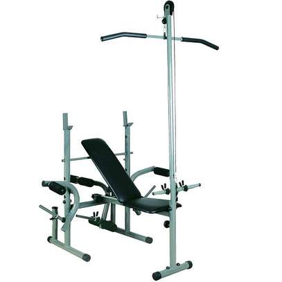 Marshal Fitness Bench Press Exercise Weight Bench with Pull Up Bar
