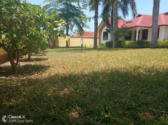 3 bed room villa house for rent at oyster bay image 6