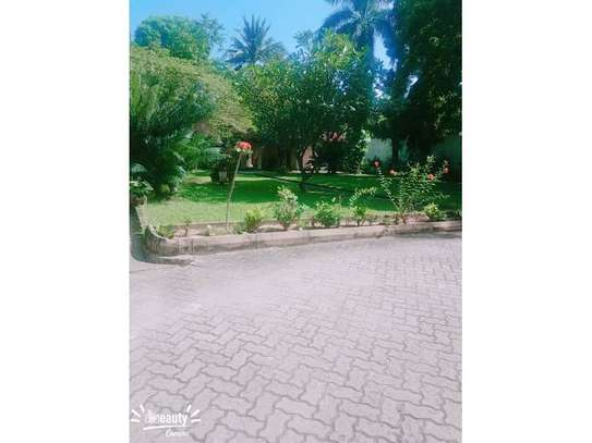 5bed house at mikocheni a $1500pm image 3