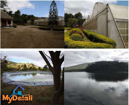 445 Acres ( 180 Hectares) Flower Farm in Arusha image 8