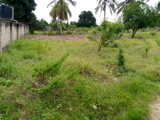 Plot for sale Mivumoni Madale-1.5 km from main road image 6