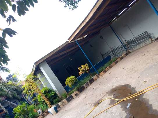 3 bed room house for rent at msasani image 3
