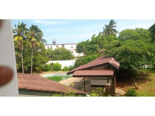 4bed house at masaki with mature garden,pool,generator $5000pm image 8