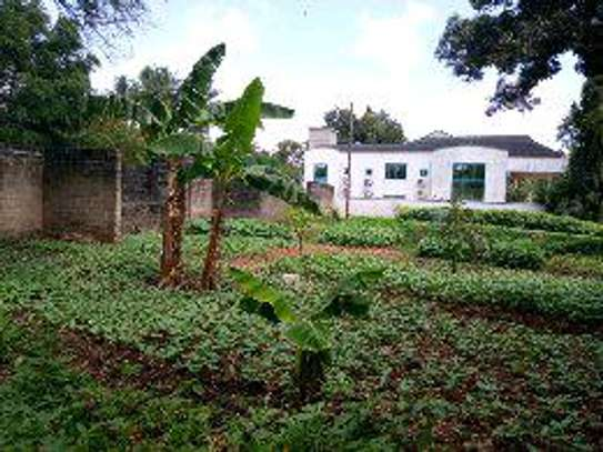2400 Sqm with House for sale Ada Estate Kinondoni. image 2