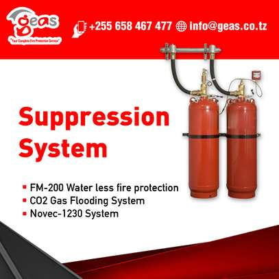 Fire Suppression System image 1