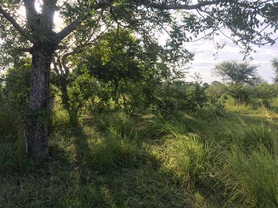 Farm for Sale at Makurunge Bagamoyo image 1