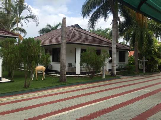 2 & 3  Bedrooms Homes for Lease  in Jangwani Beach image 12
