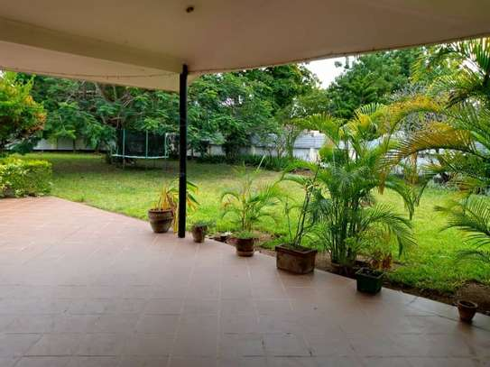 3 Bedroom House with botanic like zoo  garden for rent $2500 at oyster bay image 15