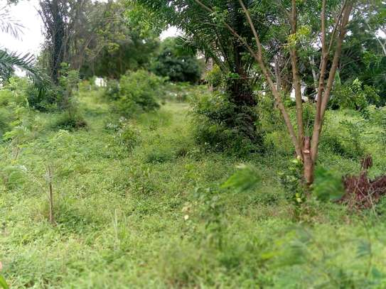 plot for sale with house for sale at segerea image 5
