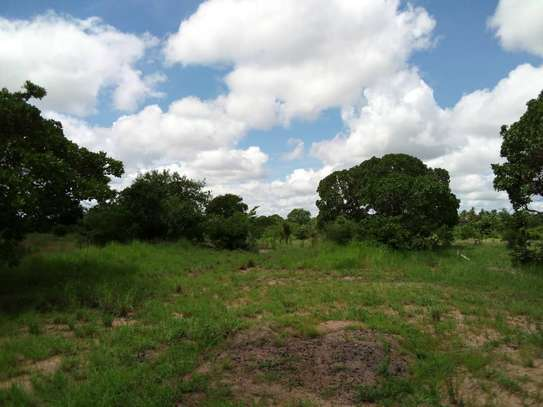 UNDEVELOPED LAND FOR  SALE image 3