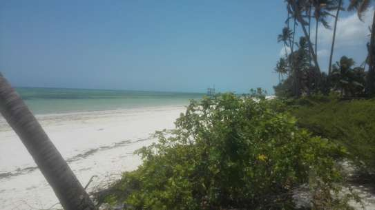 2400 Sqm  Beach Plot in Zanzibar