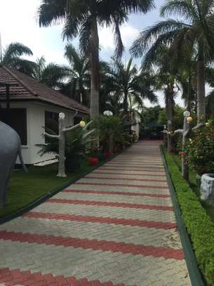 2 & 3  Bedrooms Homes for Lease  in Jangwani Beach image 8