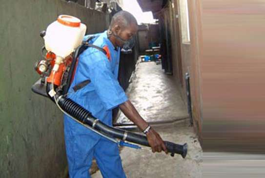 Fumigation for Restaurants and Bars image 3