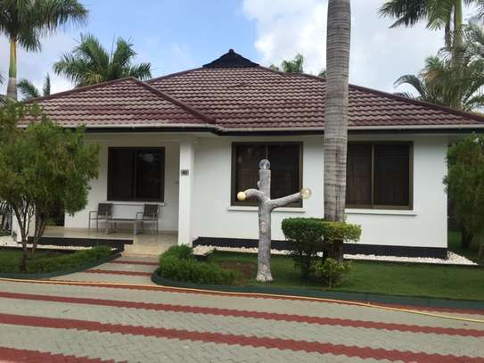 2 & 3  Bedrooms Homes for Lease  in Jangwani Beach image 11