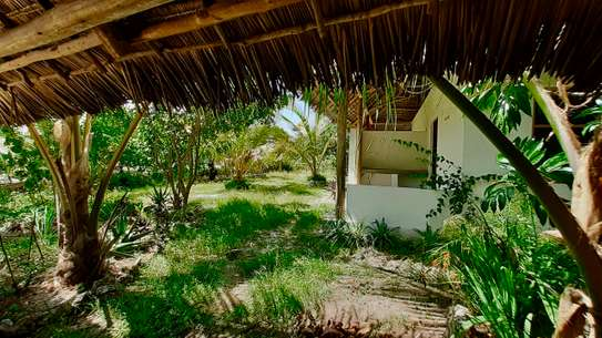 Cozy Property in Jambiani image 3