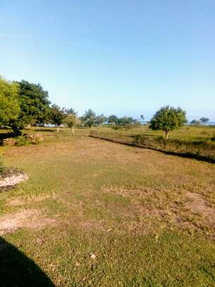 OCEANFRONT LAND FOR SALE IN PEMBA ISLAND-ZANZIBAR image 5
