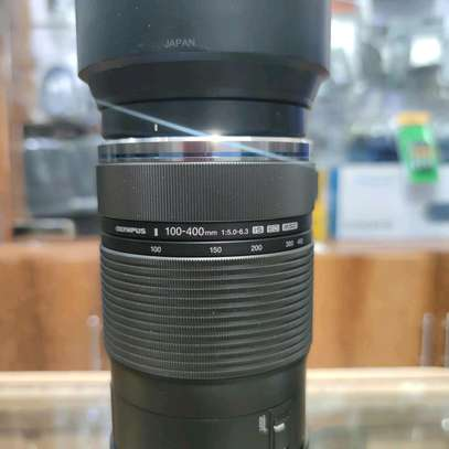 Olympus M.Zuiko Digital ED 100-400mm F5.0-6.3 IS Lens for Micro Four Thirds Cameras image 4