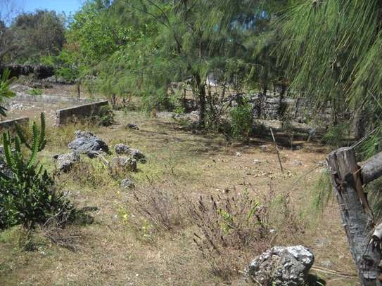 Second raw Plot of land for  Sale Zanzibar, Tanzania image 2