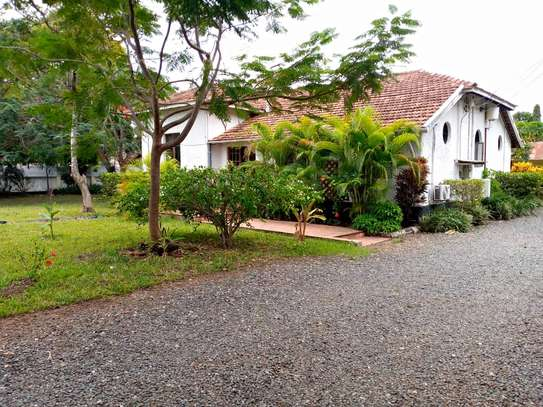 3 bed room amaizing house stand alone for rent at oyster bay image 10