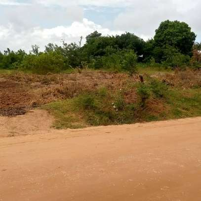 Shopping Mall Plots for Sale in Mbutu Beach Kigamboni image 1