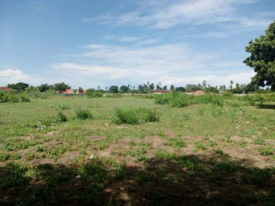 plot for sale at ununio with 4 acres image 2