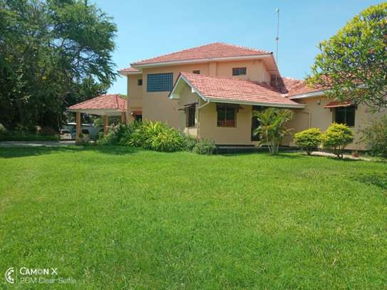 4 bed room house sea view for rent at oyster bay toure drive image 10