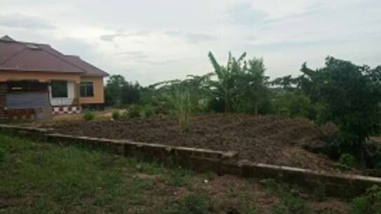 plot for sale  8 milionat bunju b near simba club area qsm 600 image 5