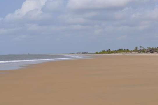 5 acres beach plot close to saadan national park Bagamoyo.$200,000