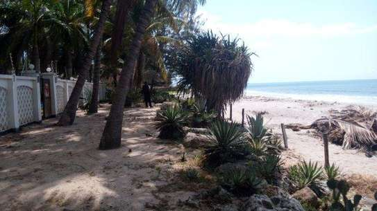 4 Bdrm Beachfront House at Kawe Beach image 4