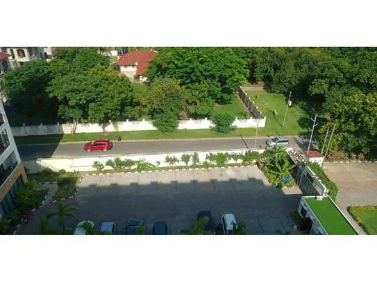 3bed apartment at oyster bay $1500pm image 10