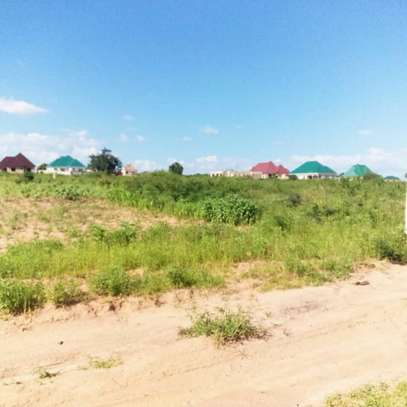 Plots for sale dodoma