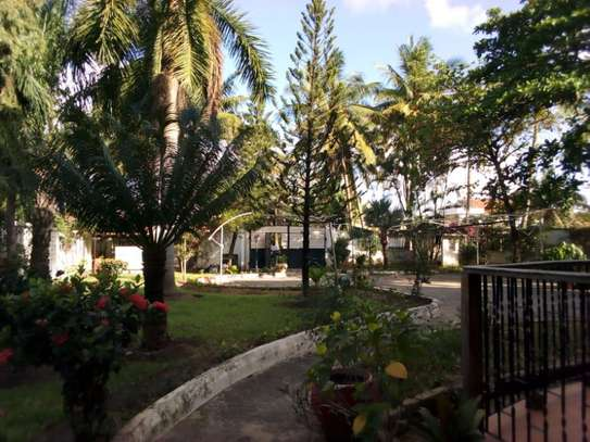 5bed house at mikocheni with pool $2000pm image 6