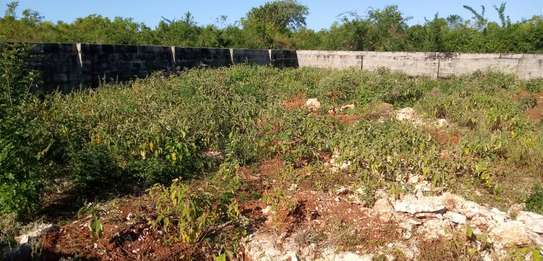Beach plot for sale at kigamboni ina title