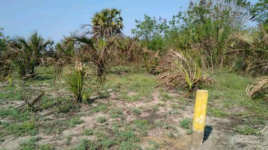 IT'S TIME TO BUY AND OWN KIGAMBONI PLOT AT VERY LOW PRICE image 7